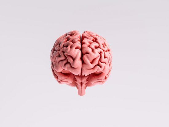 Energija za mozak